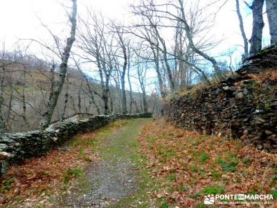 Sierra Alto Rey - Peña Mediodía; mochilas senderismo; turismo activo madrid;senderismo puente mayo